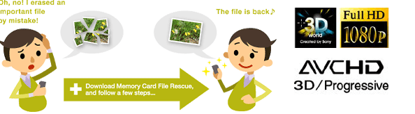 Sony global memory media portal memory card file rescue.