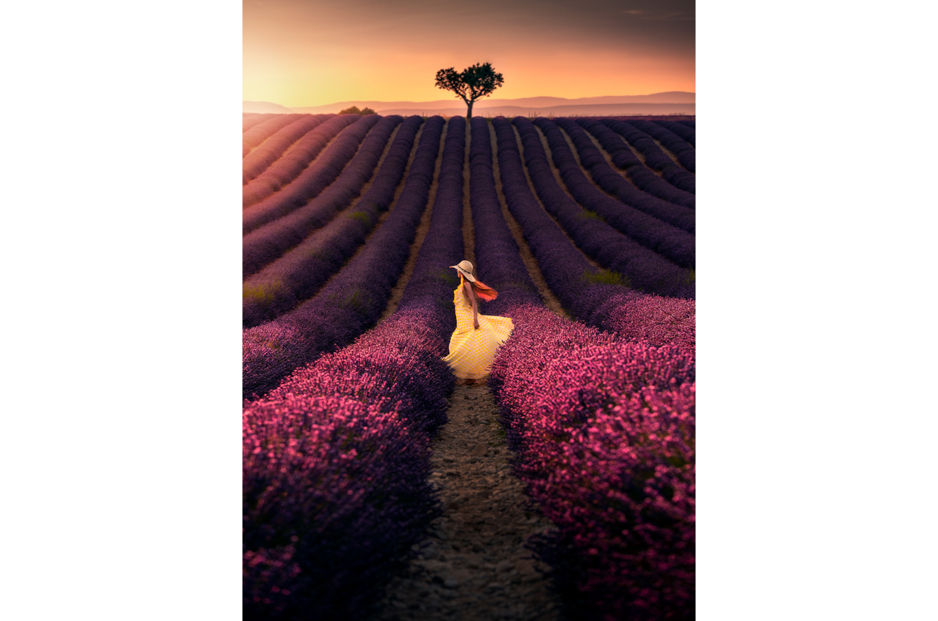 ilhan-eroglu-sony-alpha-7RIII-lady-in-a-field-with-purple-flowers-and-a-solitary-tree-in-the-distance 2