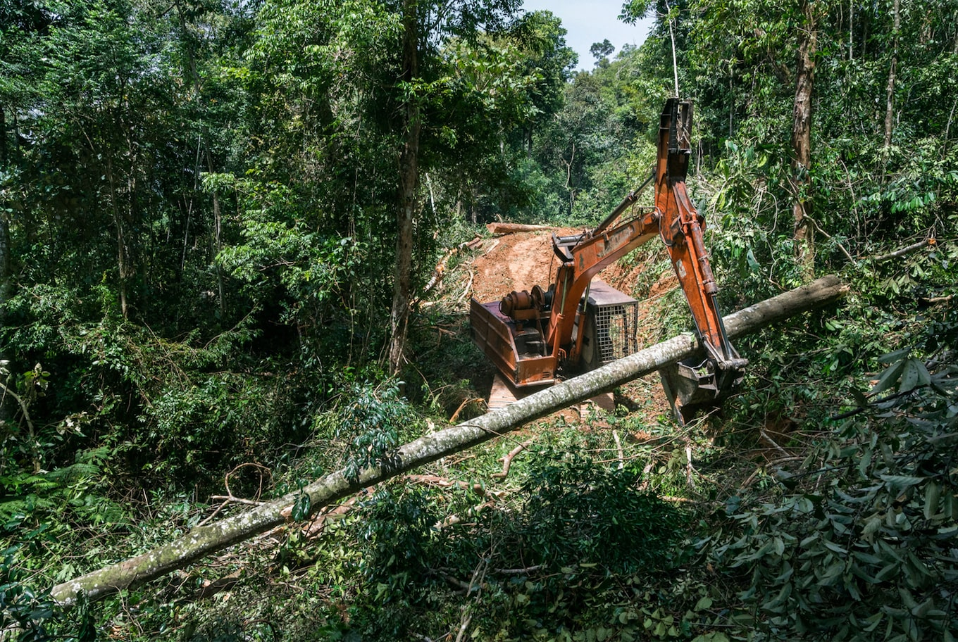 Tomas Wuethrich sony alpha 9 crane moves a huge log in the jungle