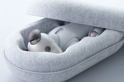 New, recycled packaging for aibo