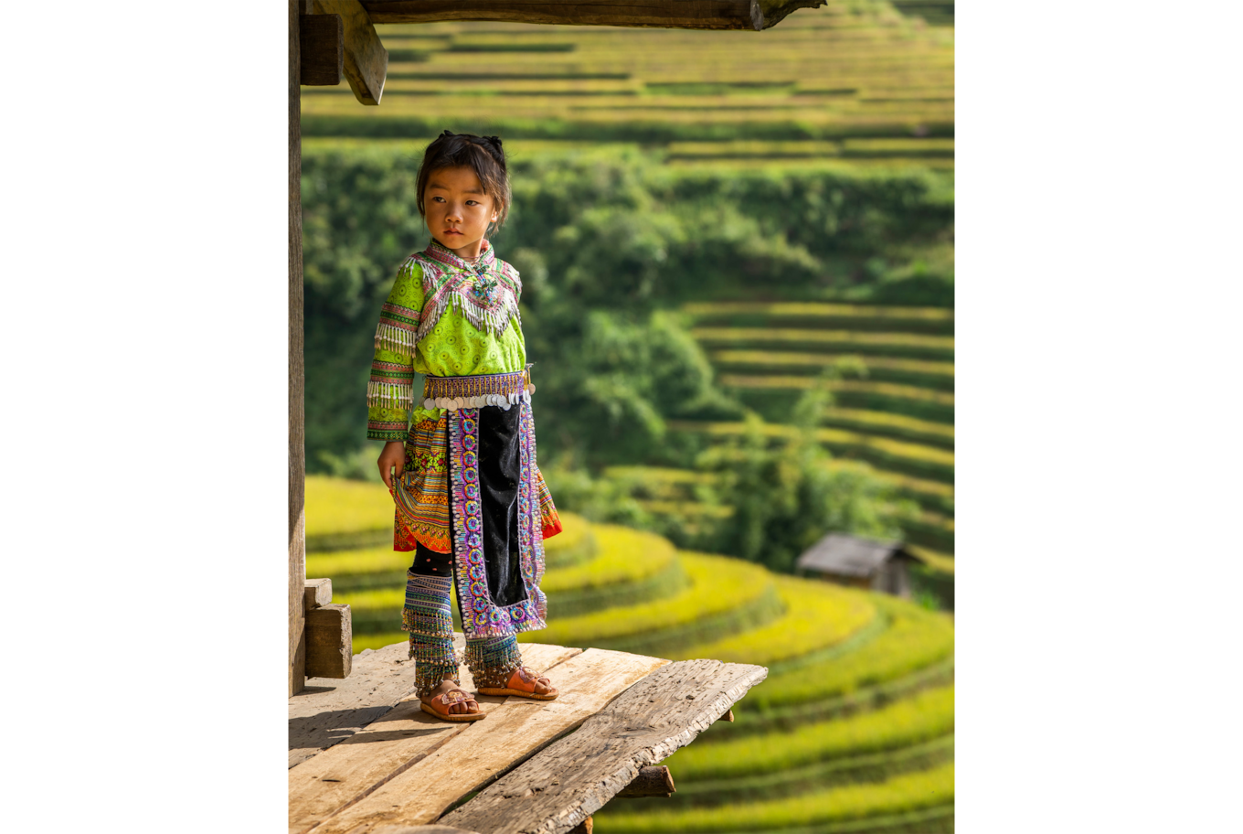 dennis schmelz sony alpha 7m3 little girl in traditional outfit stands in front of ricefields