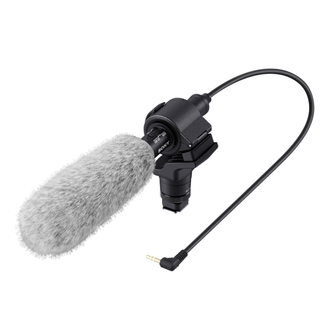 Sony camcorder microphone