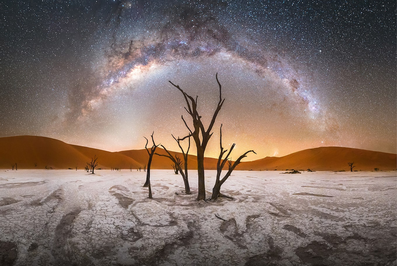 Stefan Liebermann sony alpha 7s leafless trees stand out in front of the milky way
